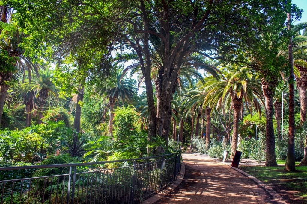 apskates vietas tenerifē kanāriju salas ceļojuma apraksts